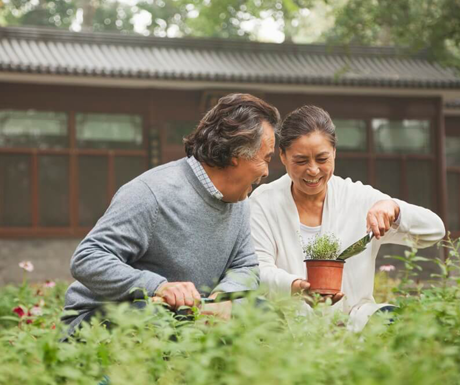 Asian couple happily gardening outside